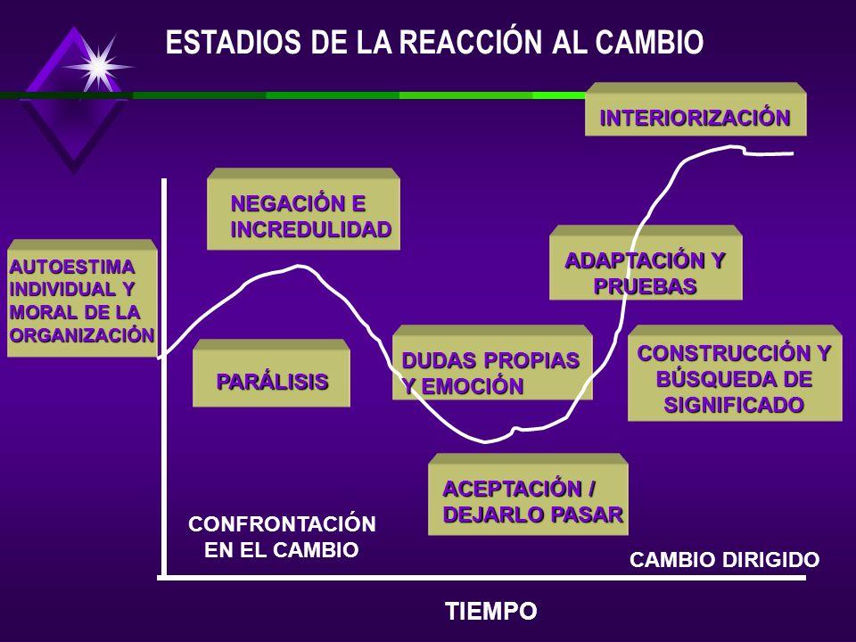 CONSTRUCCIÓN Y BÚSQUEDA DE SIGNIFICADO CONFRONTACIÓN EN EL CAMBIO