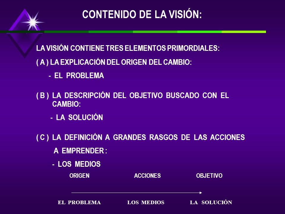 CONTENIDO DE LA VISIÓN: