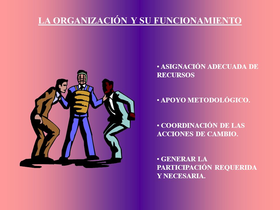 LA ORGANIZACIÓN Y SU FUNCIONAMIENTO