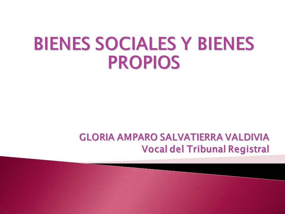 BIENES SOCIALES Y BIENES PROPIOS