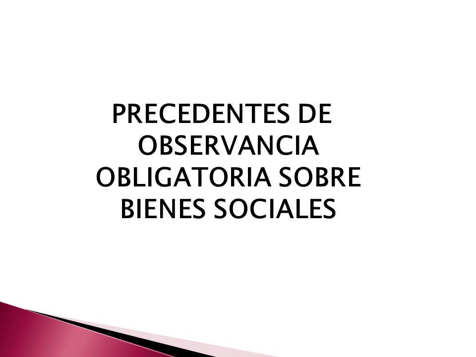 PRECEDENTES DE OBSERVANCIA OBLIGATORIA SOBRE BIENES SOCIALES