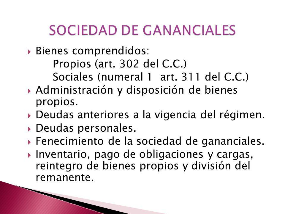 SOCIEDAD DE GANANCIALES