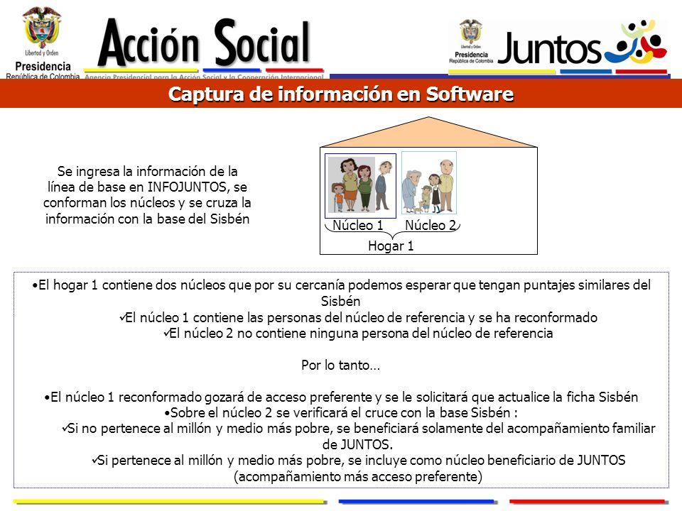 Captura de información en Software