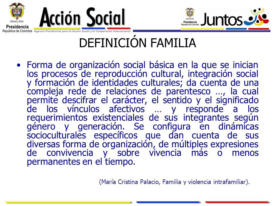 DEFINICIÓN FAMILIA