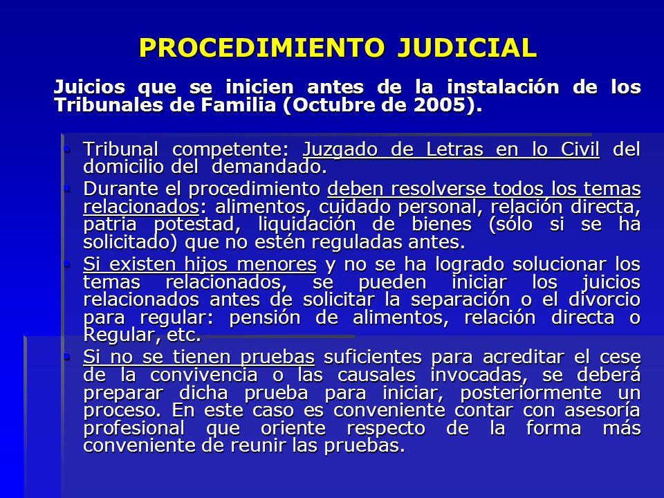 PROCEDIMIENTO JUDICIAL