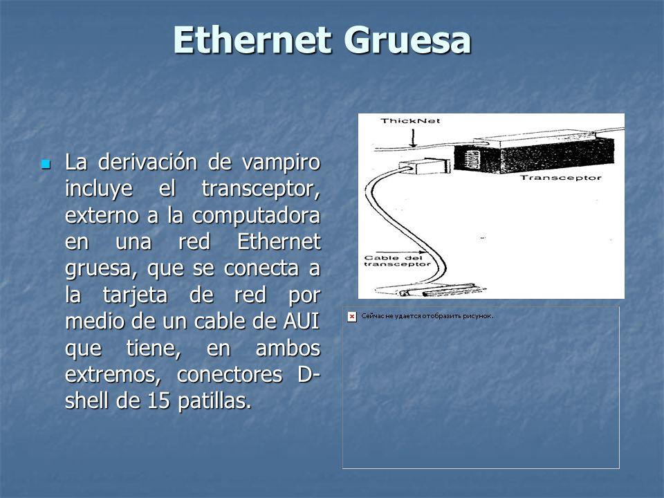 Ethernet Gruesa