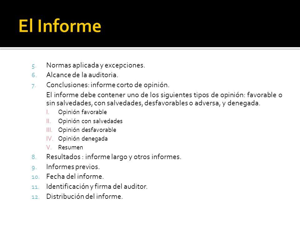 El Informe Normas aplicada y excepciones. Alcance de la auditoria.