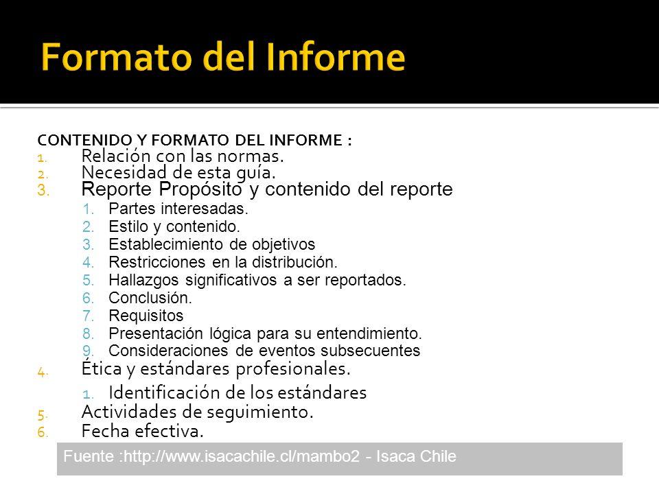 Formato del Informe Relación con las normas. Necesidad de esta guía.