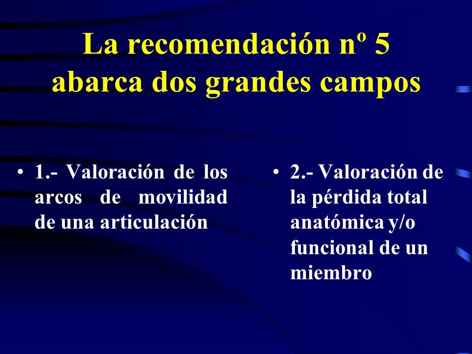 La recomendación nº 5 abarca dos grandes campos