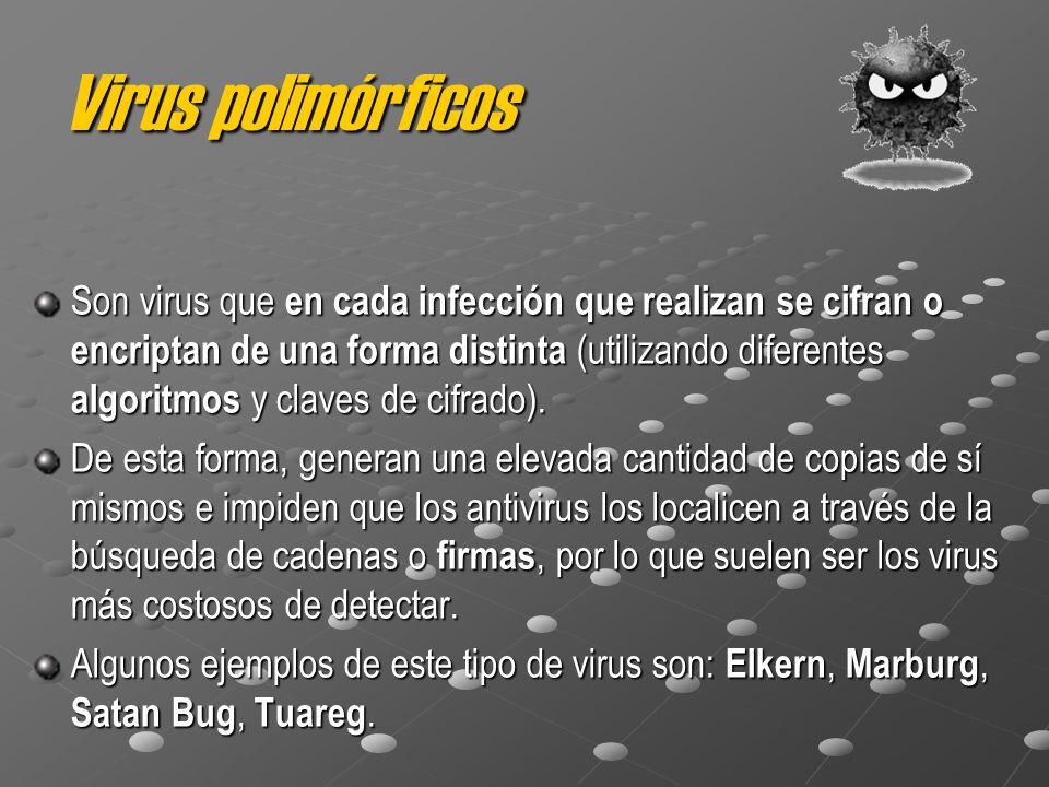 Virus polimórficos