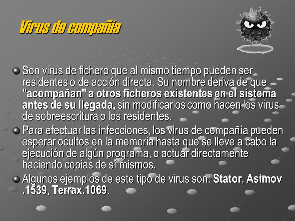Virus de compañía