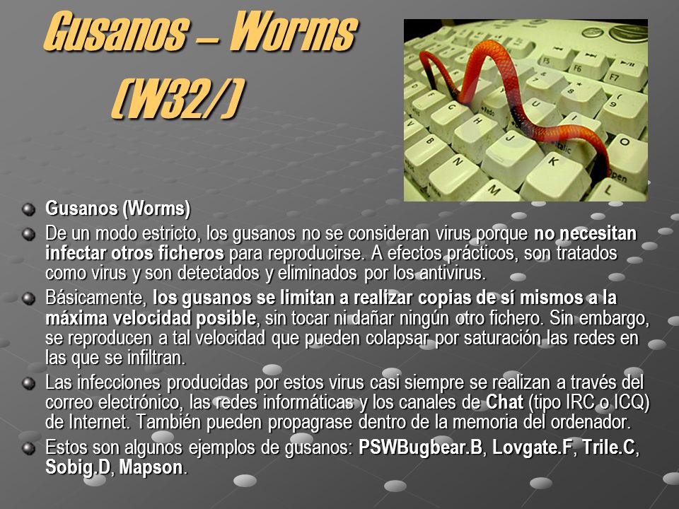 Gusanos – Worms (W32/) Gusanos (Worms)