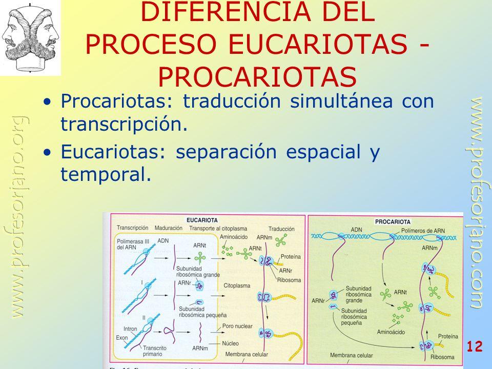 DIFERENCIA DEL PROCESO EUCARIOTAS - PROCARIOTAS