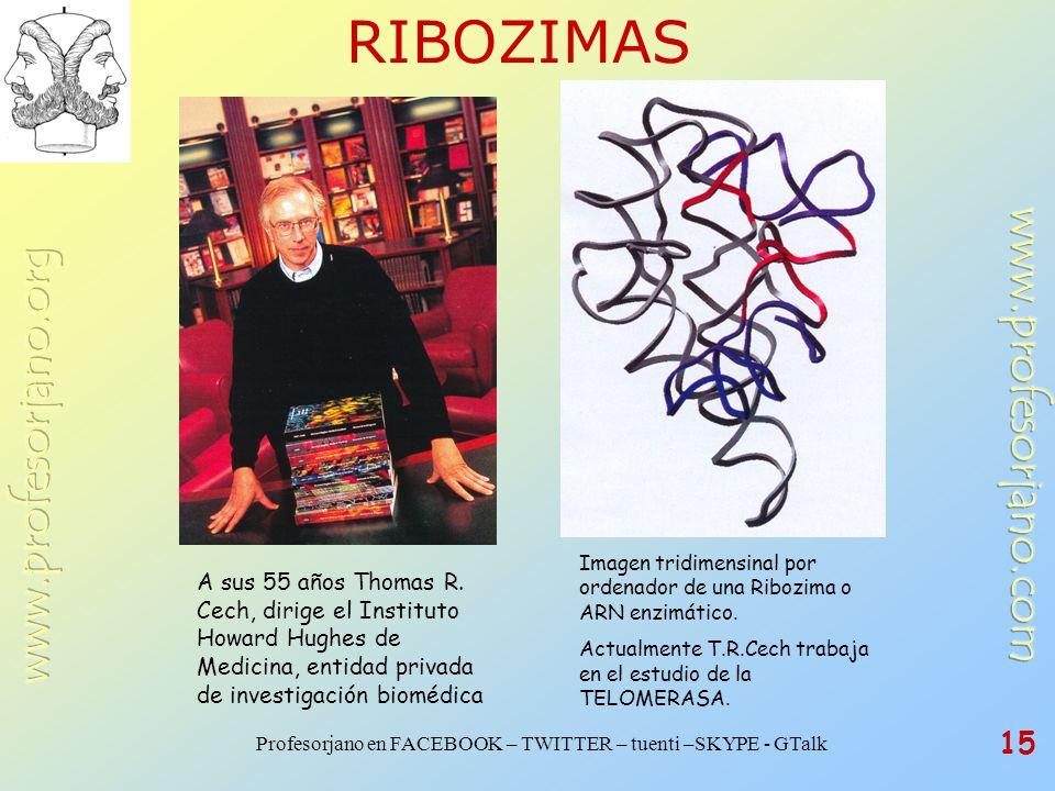 RIBOZIMAS Imagen tridimensinal por ordenador de una Ribozima o ARN enzimático. Actualmente T.R.Cech trabaja en el estudio de la TELOMERASA.