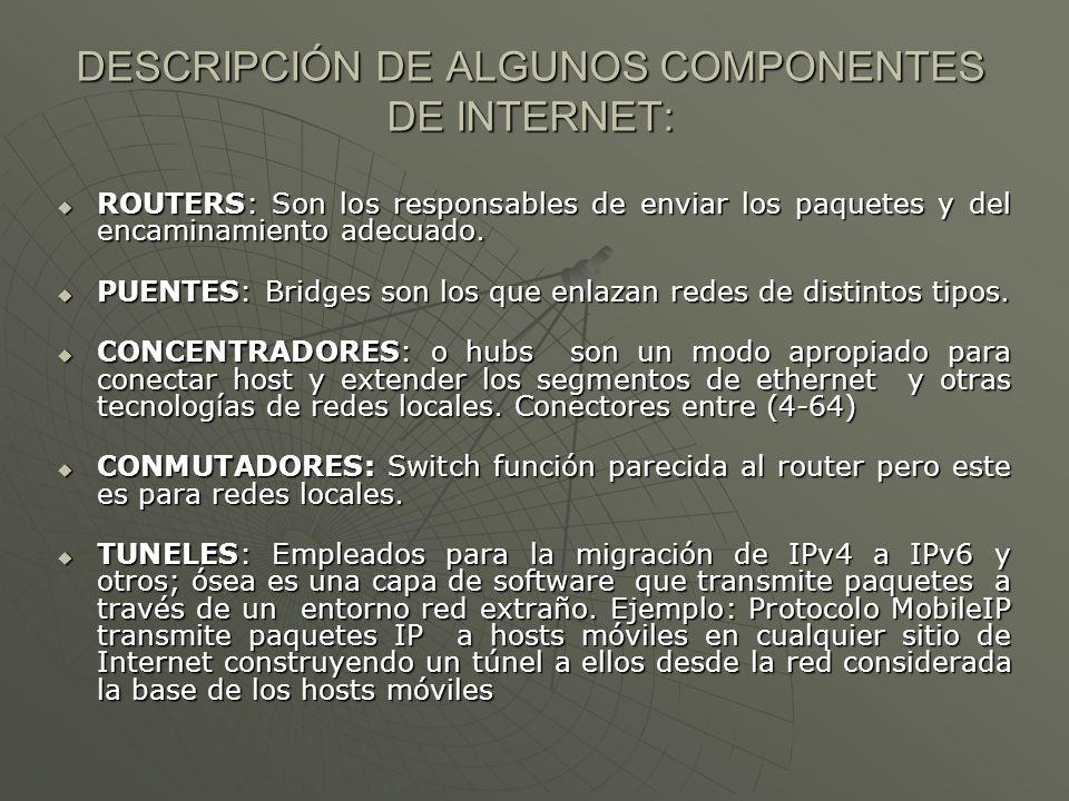 DESCRIPCIÓN DE ALGUNOS COMPONENTES DE INTERNET: