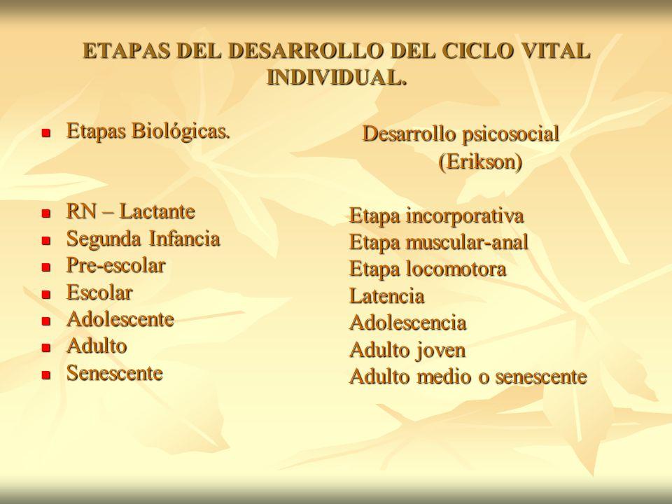 ETAPAS DEL DESARROLLO DEL CICLO VITAL INDIVIDUAL.