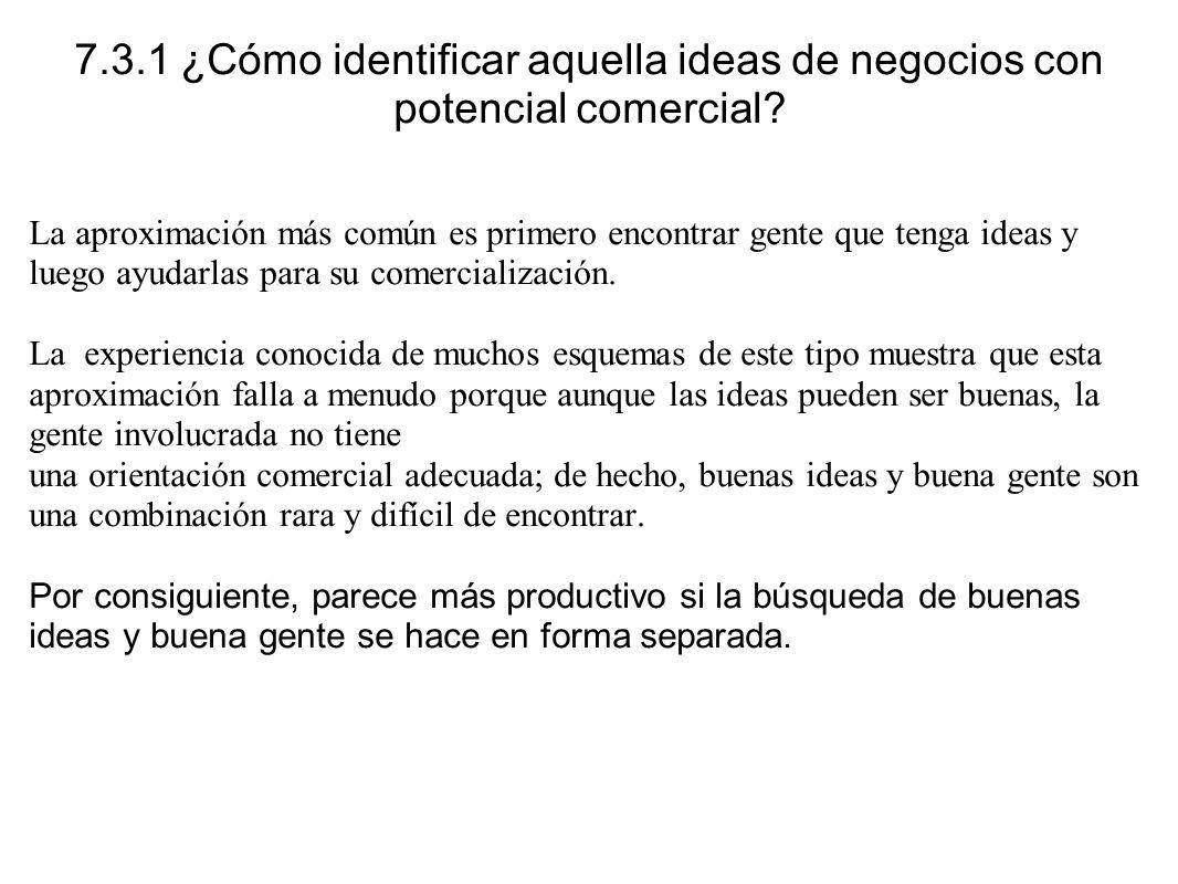7.3.1 ¿Cómo identificar aquella ideas de negocios con potencial comercial