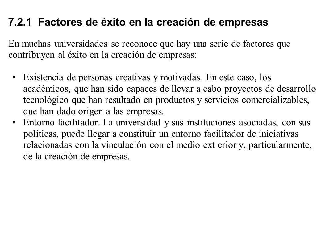 7.2.1 Factores de éxito en la creación de empresas