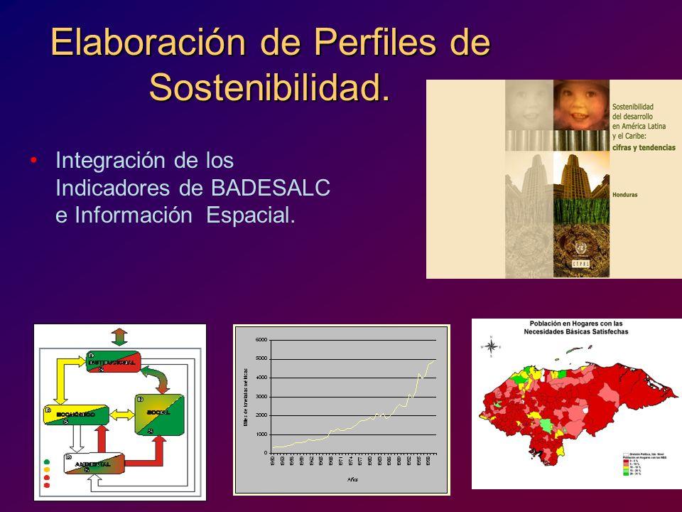 Elaboración de Perfiles de Sostenibilidad.