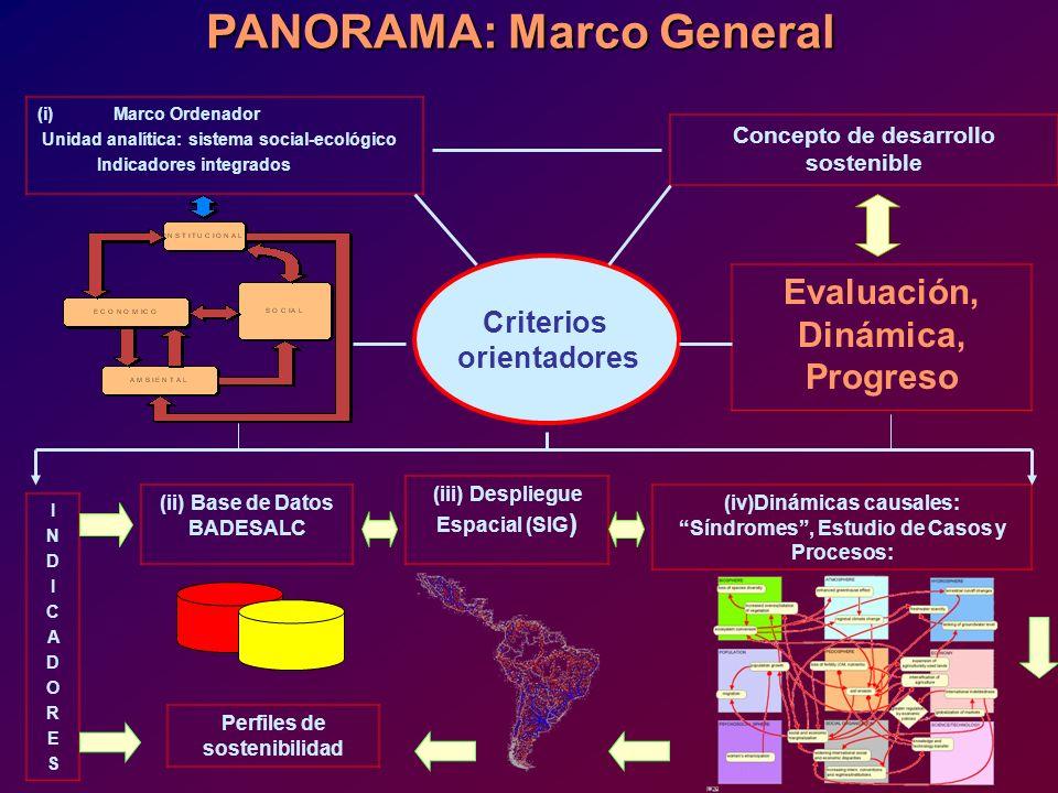 PANORAMA: Marco General