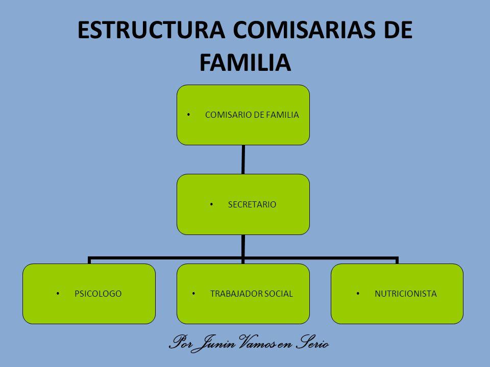 ESTRUCTURA COMISARIAS DE FAMILIA