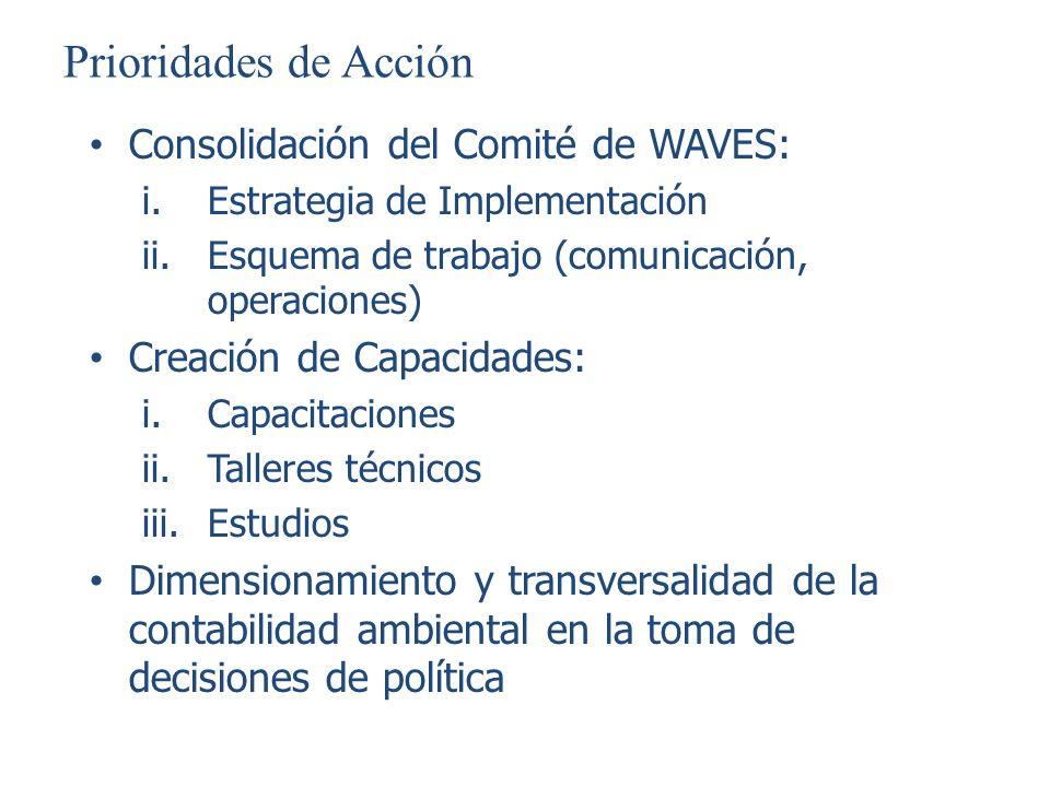Prioridades de Acción Consolidación del Comité de WAVES: