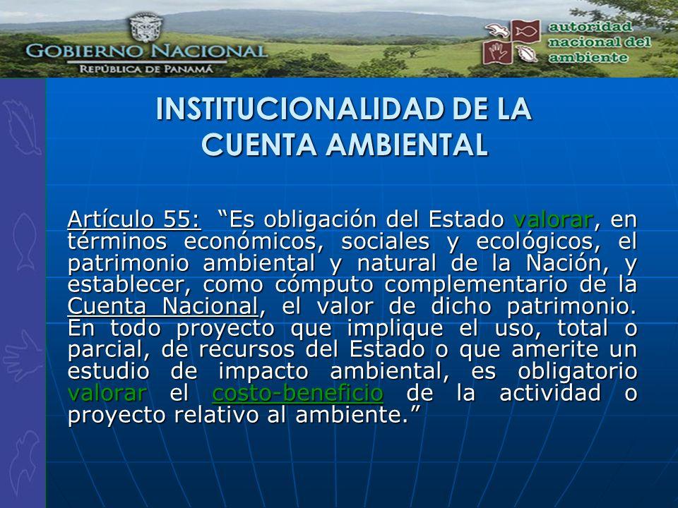 INSTITUCIONALIDAD DE LA CUENTA AMBIENTAL