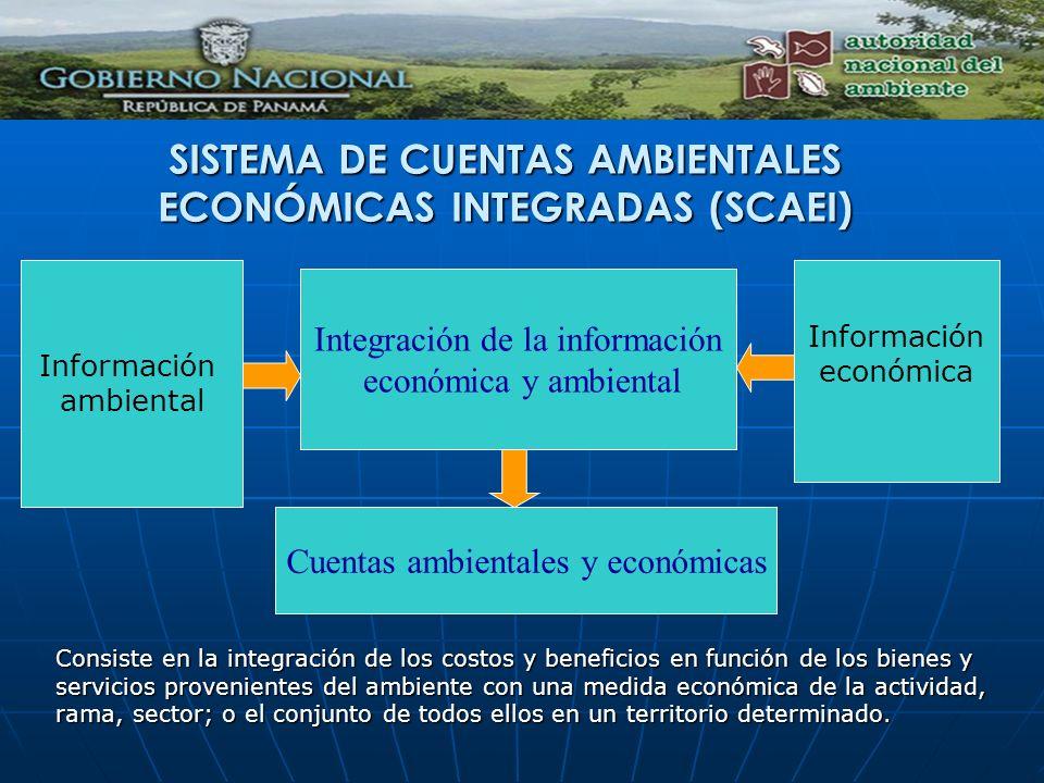 SISTEMA DE CUENTAS AMBIENTALES ECONÓMICAS INTEGRADAS (SCAEI)