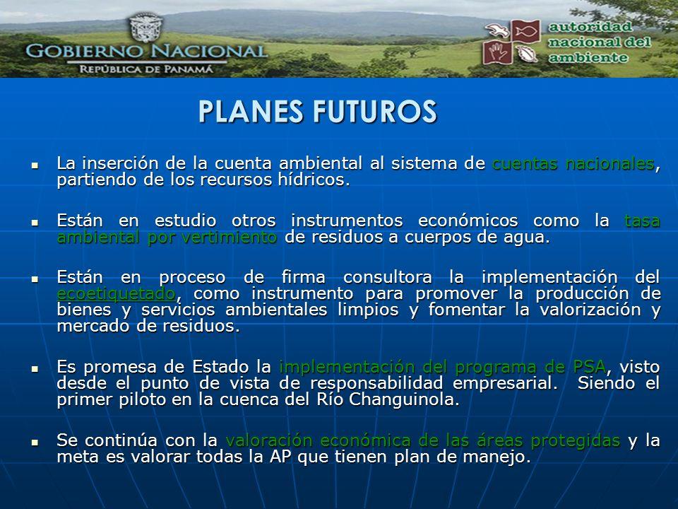 PLANES FUTUROS La inserción de la cuenta ambiental al sistema de cuentas nacionales, partiendo de los recursos hídricos.