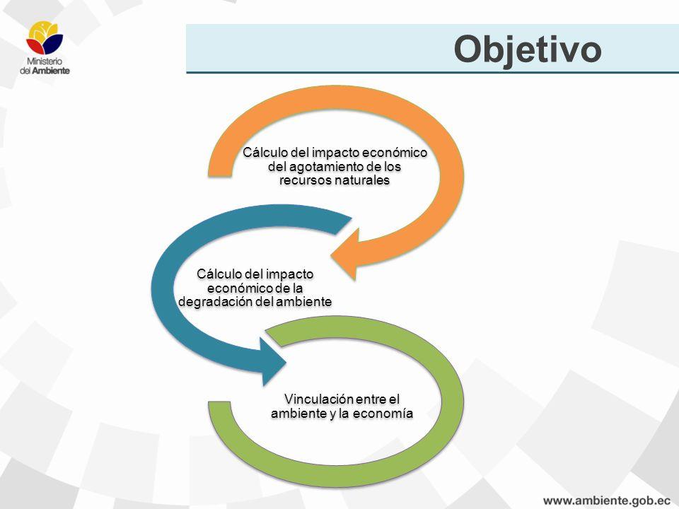 Objetivo Cálculo del impacto económico del agotamiento de los recursos naturales. Cálculo del impacto económico de la degradación del ambiente.