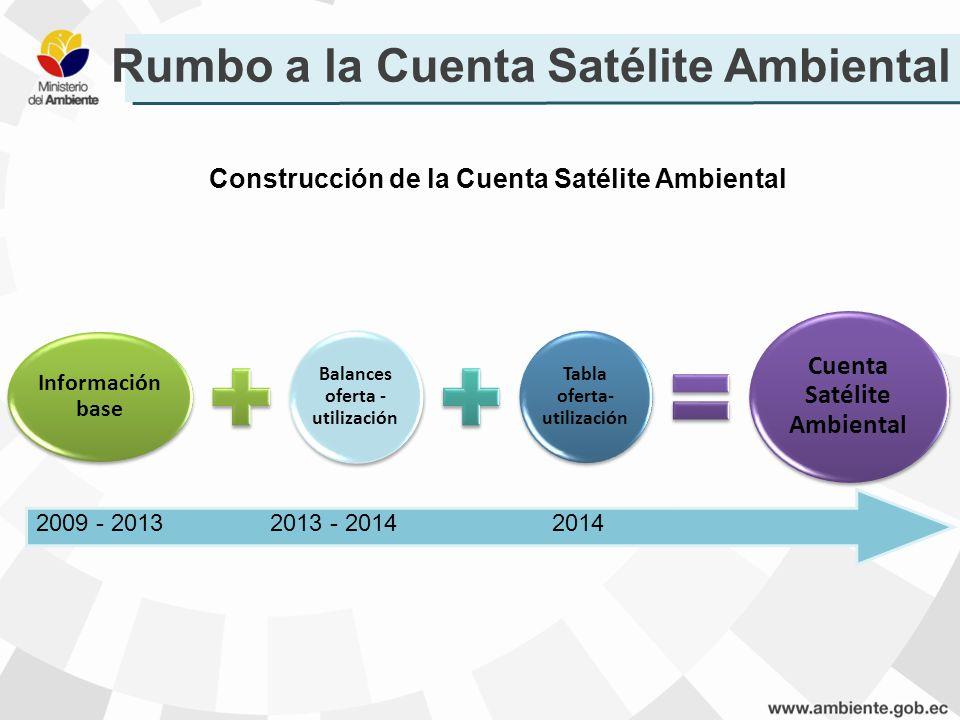Construcción de la Cuenta Satélite Ambiental