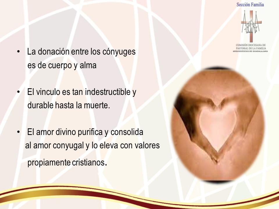 La donación entre los cónyuges