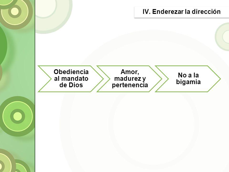 IV. Enderezar la dirección
