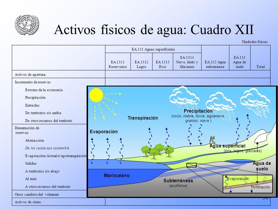 Activos físicos de agua: Cuadro XII