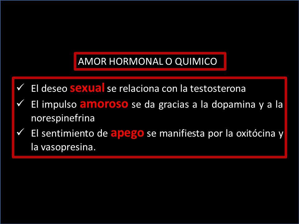 AMOR HORMONAL O QUIMICO