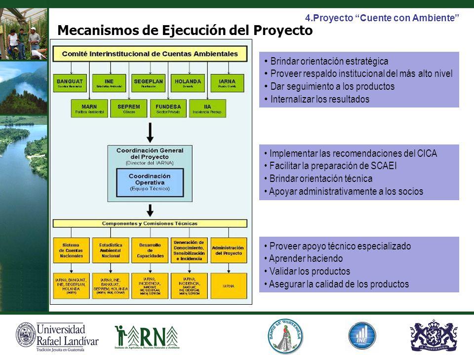 Mecanismos de Ejecución del Proyecto