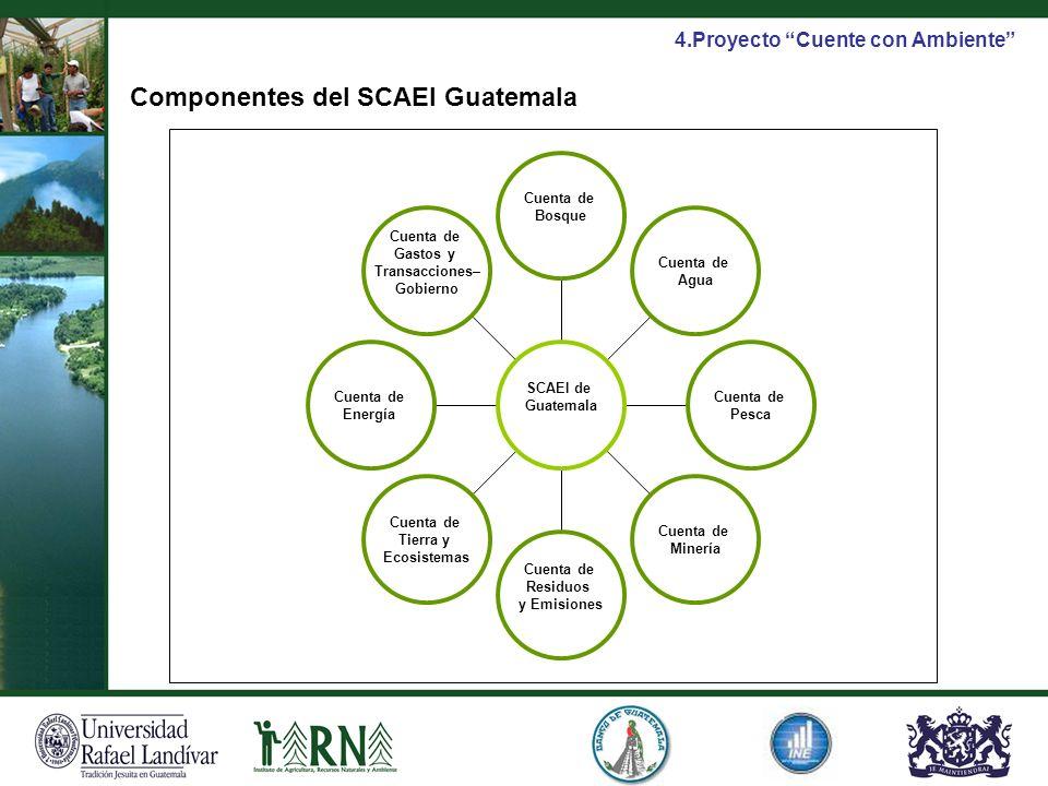 Componentes del SCAEI Guatemala