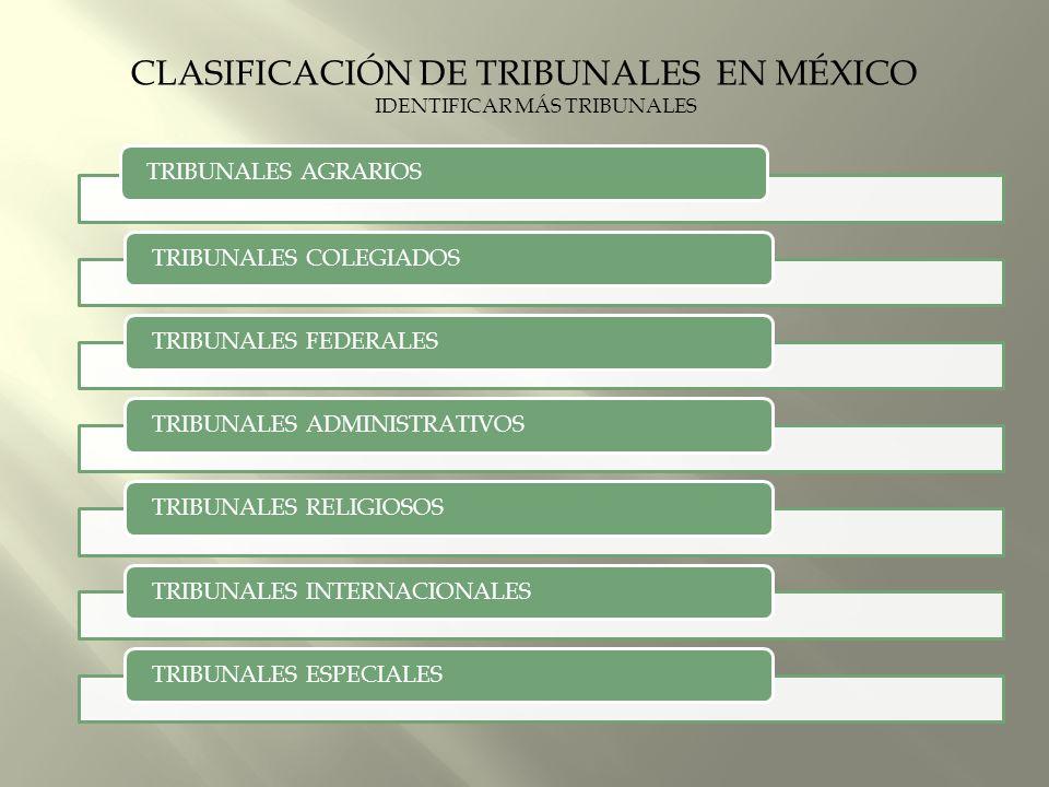 IDENTIFICAR MÁS TRIBUNALES