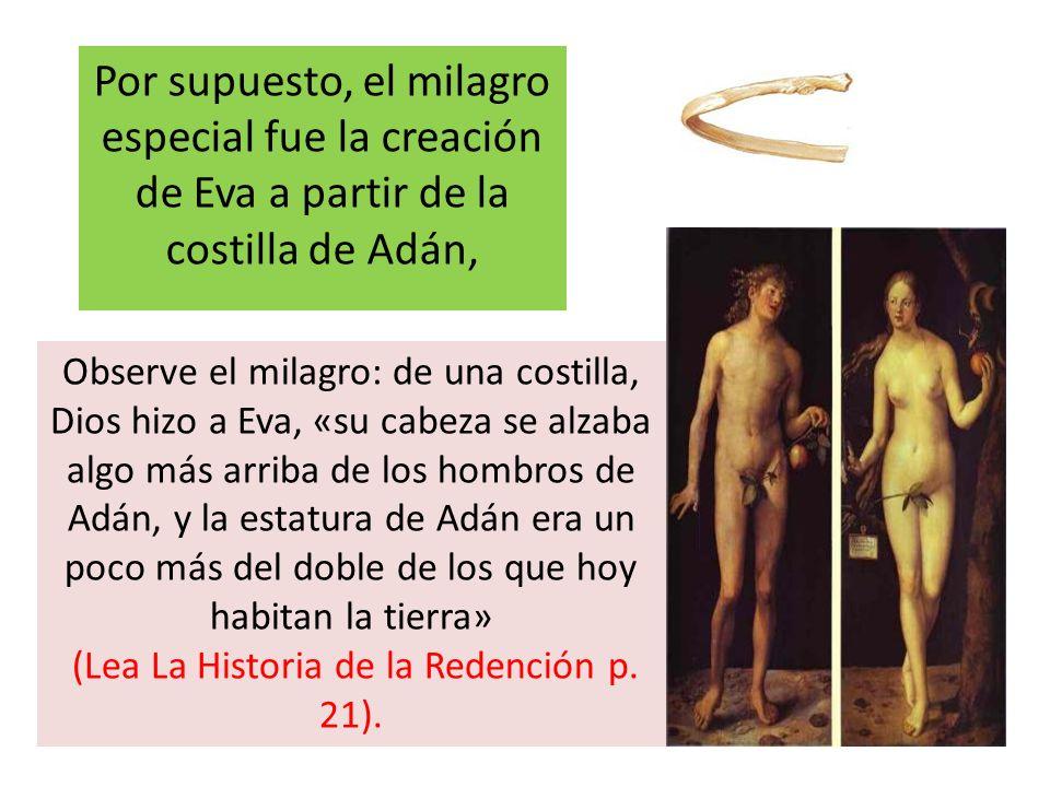 (Lea La Historia de la Redención p. 21).