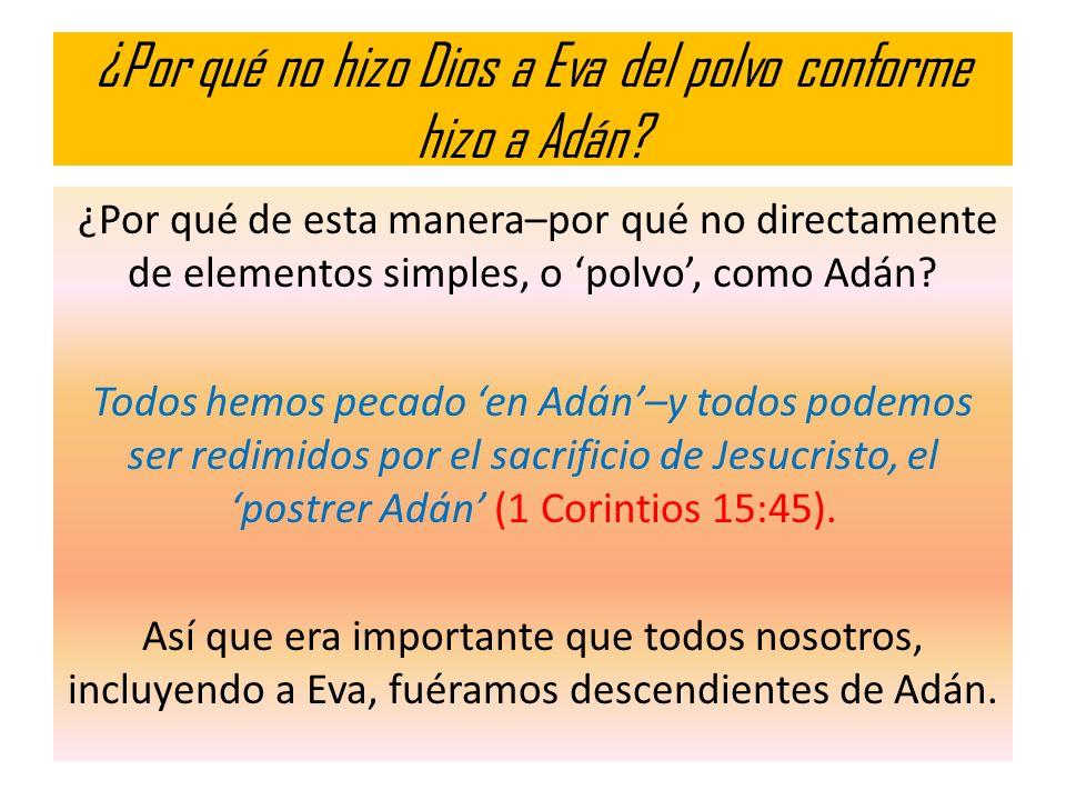¿Por qué no hizo Dios a Eva del polvo conforme hizo a Adán