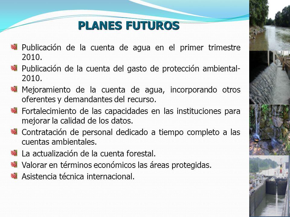 PLANES FUTUROS Publicación de la cuenta de agua en el primer trimestre 2010. Publicación de la cuenta del gasto de protección ambiental- 2010.