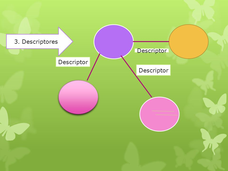 3. Descriptores Descriptor Descriptor Descriptor