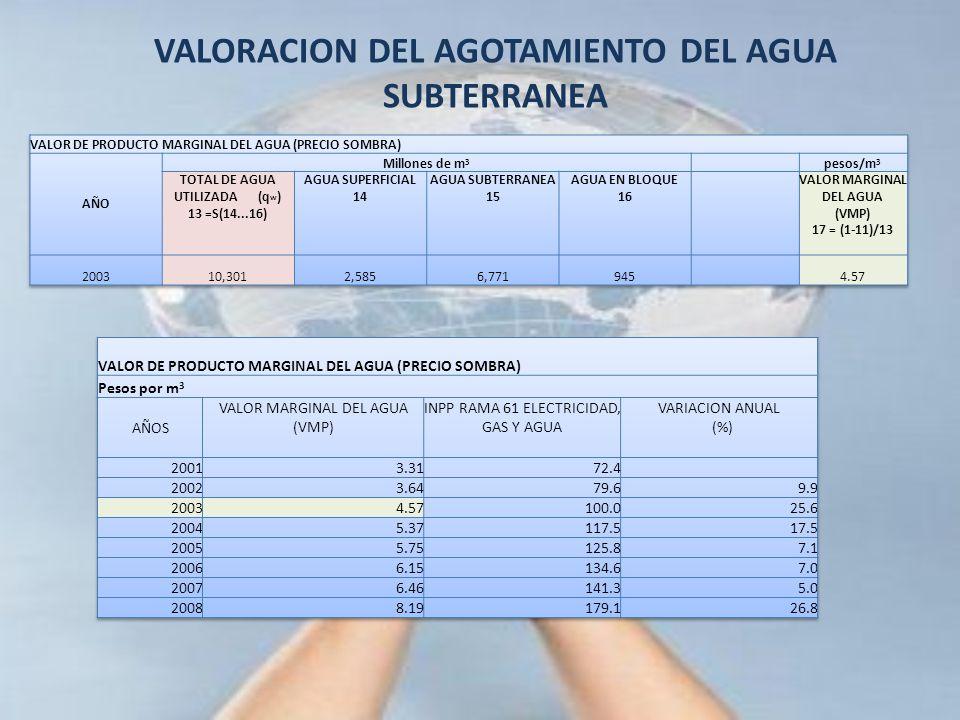 VALORACION DEL AGOTAMIENTO DEL AGUA SUBTERRANEA