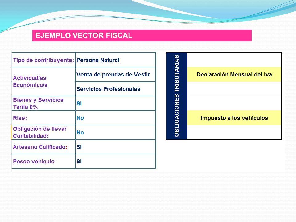 EJEMPLO VECTOR FISCAL