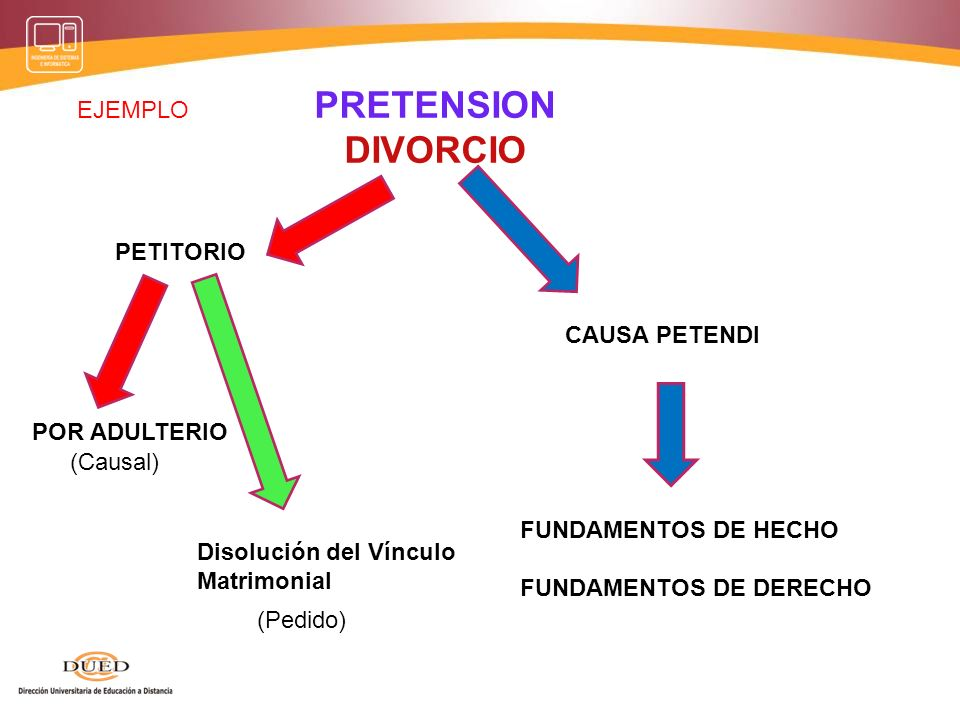 PRETENSION DIVORCIO EJEMPLO PETITORIO CAUSA PETENDI POR ADULTERIO