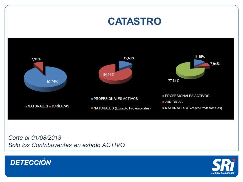 CATASTRO DETECCIÓN Corte al 01/08/2013