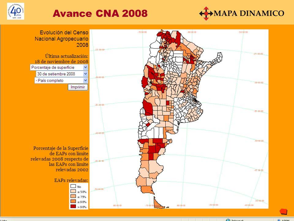 Avance CNA 2008