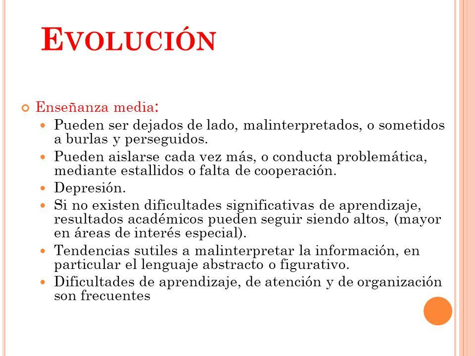 Evolución Enseñanza media: