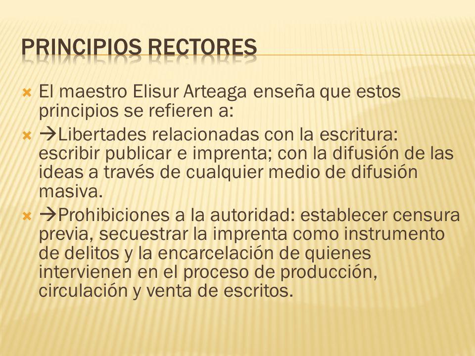 Principios rectores El maestro Elisur Arteaga enseña que estos principios se refieren a: