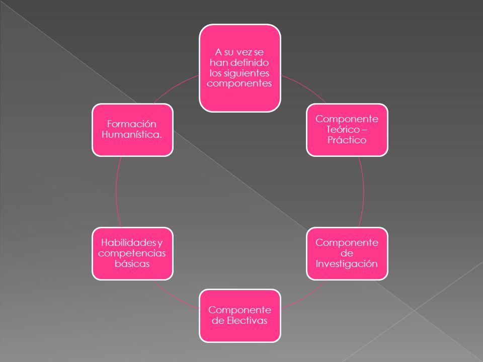 A su vez se han definido los siguientes componentes